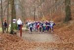 Crossløb i skoven